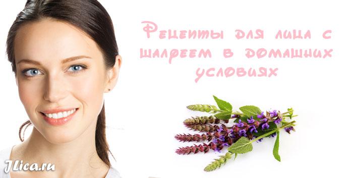 Шалфей для лица польза применение рецепты