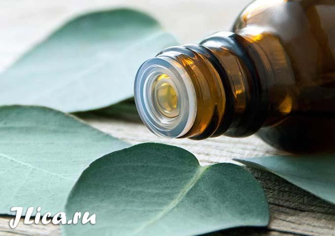 масло эвкалипта для лица применение маски для кожи