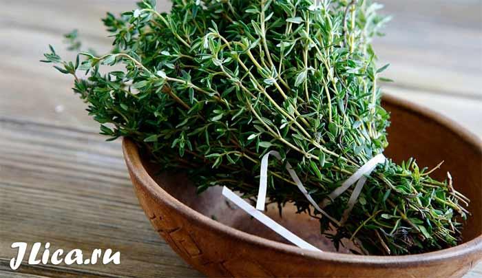 Применение отвар травы чабреца для лица