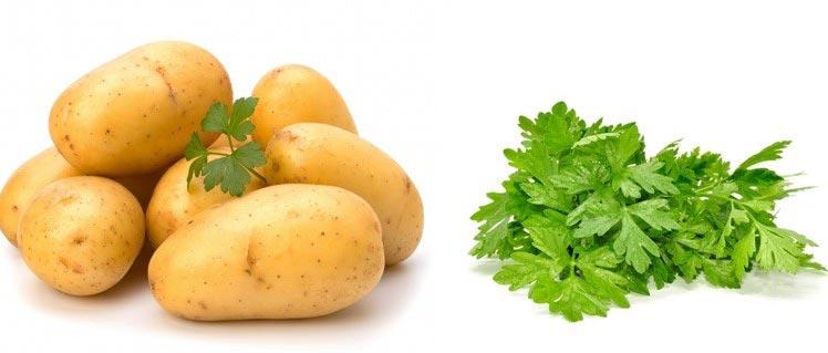Маска из картофеля регенерирующая кожу лица